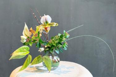 季節の花を手軽に楽しめる。カドーマールマールの定期便